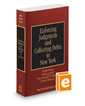 Enforcing Judgments and Collecting Debts in New York, 2016-2017 ed. (Vol. A, New York Practice Series)