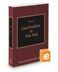 Lien Priorities in New York, 2019-2020 ed. (Vol. 36, New York Practice Series)