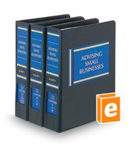 Advising Small Businesses