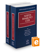 Norton Bankruptcy Code and Rules, 2020–2021 ed.
