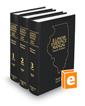 Illinois Evidence Manual, 4th