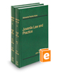 Juvenile Law & Practice, 4th (Vols. 12 & 13, Minnesota Practice Series)