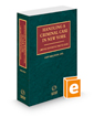 Handling A Criminal Case in New York, 2020-2021 ed.
