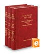 Family Law and Practice with Forms (Vols. 10, 11, and 12, New Jersey Practice Series)