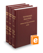 Criminal Practice and Procedure, Revised ed. (Vol. 9-11, Tennessee Practice Series)