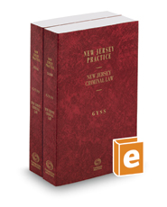 Criminal Law, 5th, 2017 ed. (Vols. 33 & 33A, New Jersey Practice Series)