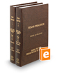 Guide to the Texas Rules of Evidence: Civil and Criminal, 4th (Vols. 1 and 2, Texas Practice Series)