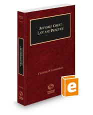 Juvenile Court Law and Practice, 2021-2022 ed. (Vol. 4, Nebraska Practice Series)