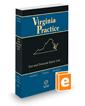 Tort and Personal Injury Law, 2017-2018 ed. (Vol. 13, Virginia Practice Series™)