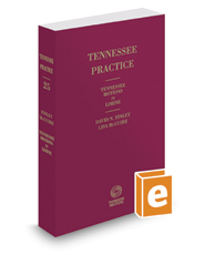 Tennessee Motions in Limine, 2016-2017 ed. (Vol. 25, Tennessee Practice Series)