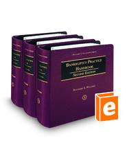 Bankruptcy Practice Handbook, 2d