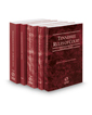 Tennessee Rules of Court - State, Federal, Federal KeyRules, Local and Local KeyRules, 2017 ed. (Vols. I-IIIA, Tennessee Court Rules)