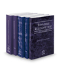 Tennessee Rules of Court - State, Federal, Federal KeyRules, Local and Local KeyRules, 2020 ed. (Vols. I-IIIA, Tennessee Court Rules)