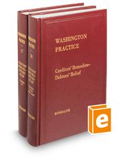 Creditors' Remedies - Debtors' Relief (Vols. 27 and 28, Washington Practice Series)