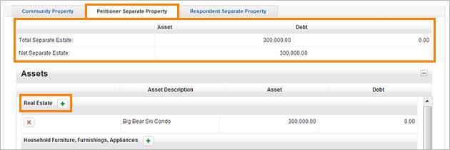Petitioner Separate Property screenshot